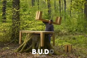 BUD RAison durable en forêt - Copie